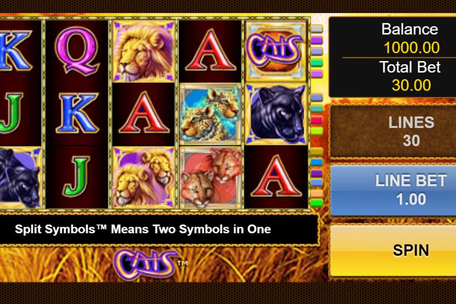 Cats Royal Slot Machine